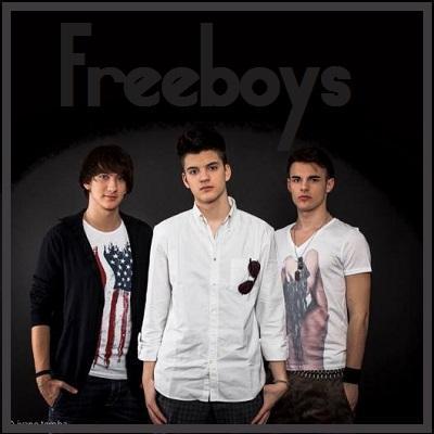 Freeboys